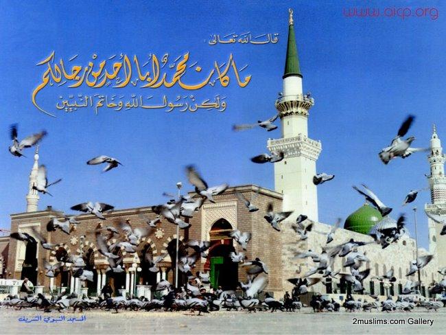 madena_islamic_gallery_82