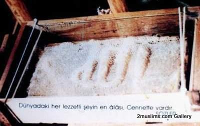 islamic_miraclesbees