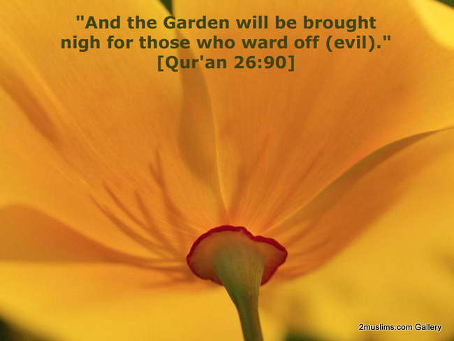 quran_backgrounds_wallpaper_10