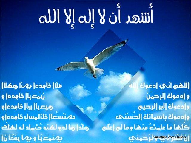 shahada_gallery_INVOC_(5)